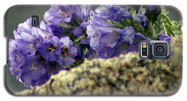 Galaxy S5 Case featuring the photograph Growing In Granite by Jeremy Rhoades