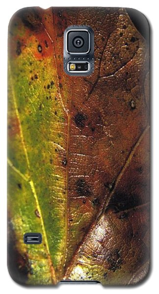 Growth-leaf Galaxy S5 Case
