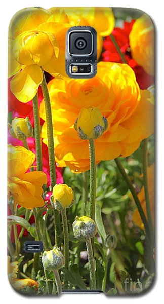Growth Of A Ranunculus Galaxy S5 Case