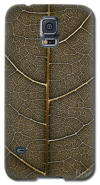 Galaxy S5 Case featuring the photograph Grunge Leaf Detail by Carsten Reisinger