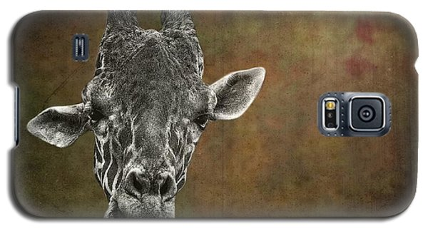 Grungy Giraffe 5654 Brown Galaxy S5 Case