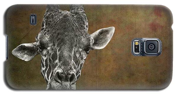 Grungy Giraffe 5654 Brown Galaxy S5 Case