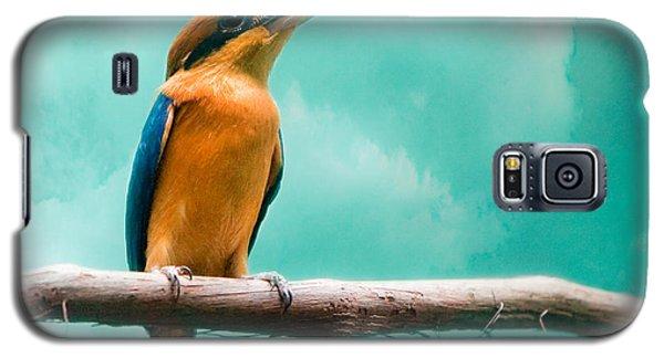 Guam Kingfisher - Exotic Birds Galaxy S5 Case