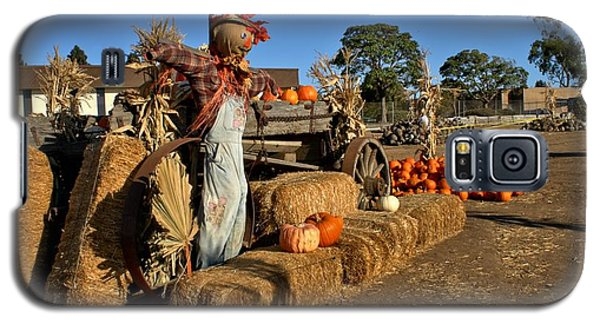 Galaxy S5 Case featuring the photograph Guarding The Pumpkin Patch by Michael Gordon
