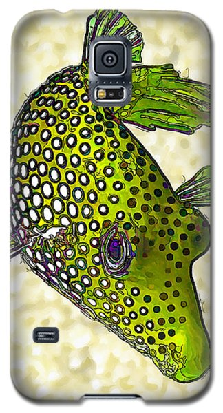 Guinea Fowl Puffer Fish In Green Galaxy S5 Case by ABeautifulSky Photography