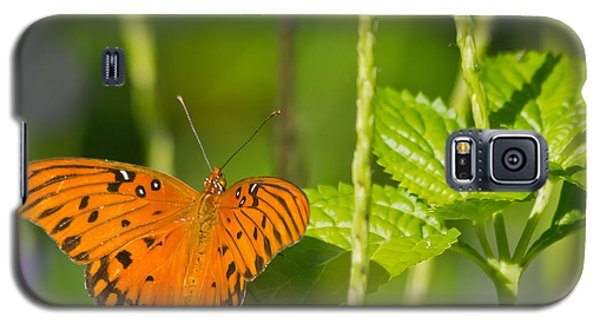 Galaxy S5 Case featuring the photograph Gulf Fritillary by Jane Luxton