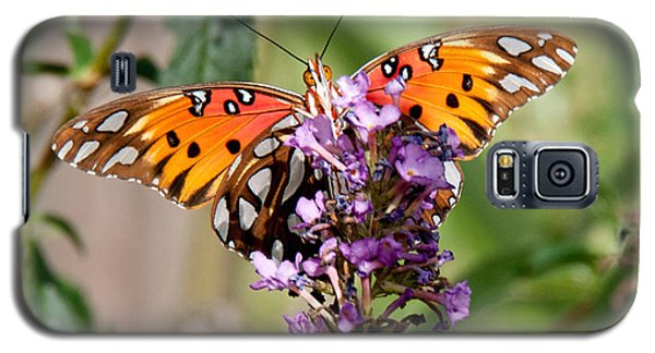 Gulf Fritillary On Purple Buddleia Galaxy S5 Case