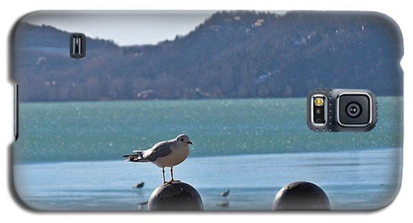 Gull Galaxy S5 Case