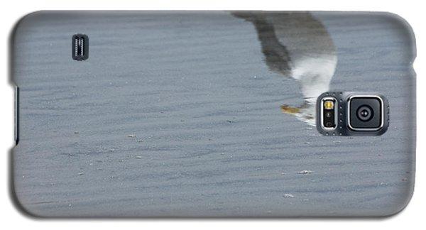 Gull At The Beach Galaxy S5 Case