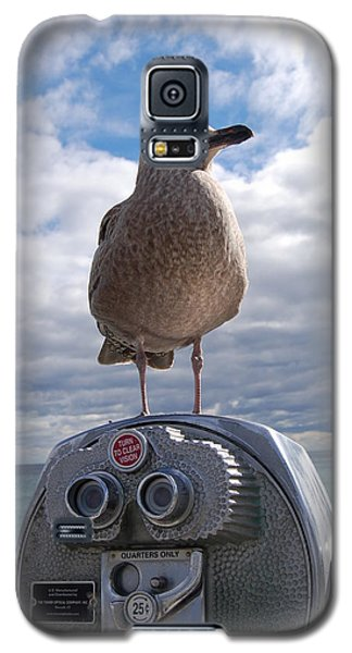 Galaxy S5 Case featuring the photograph Gull by Mim White