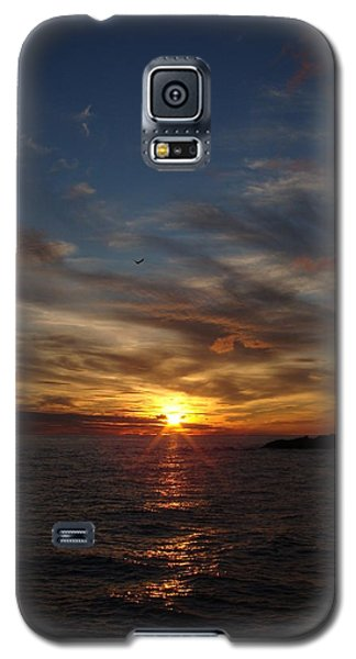 Galaxy S5 Case featuring the photograph Gull Rise by Bonfire Photography