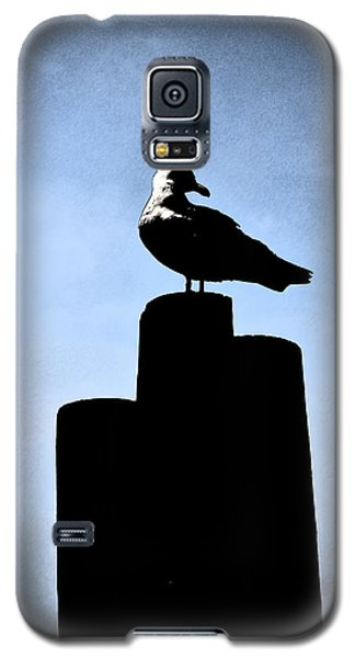 Gull Silhouette Galaxy S5 Case