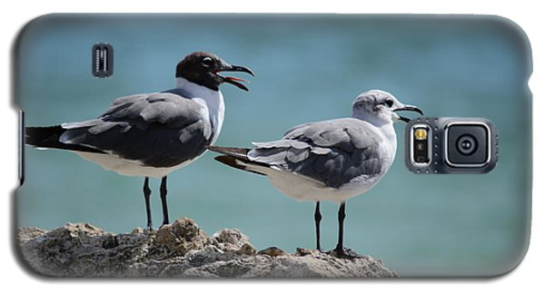 Gull Talk Galaxy S5 Case
