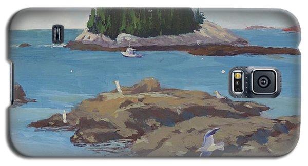 Gulls At Five Islands Galaxy S5 Case