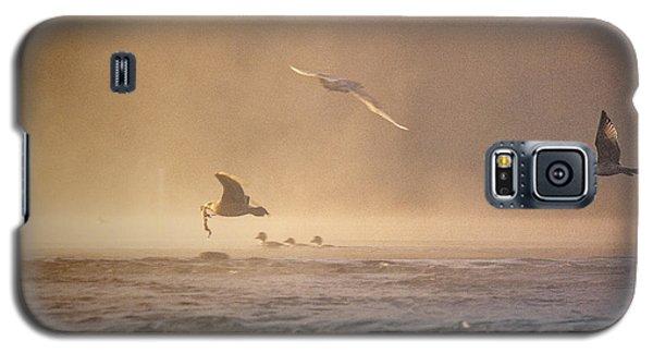 Gulls In The Fog Galaxy S5 Case
