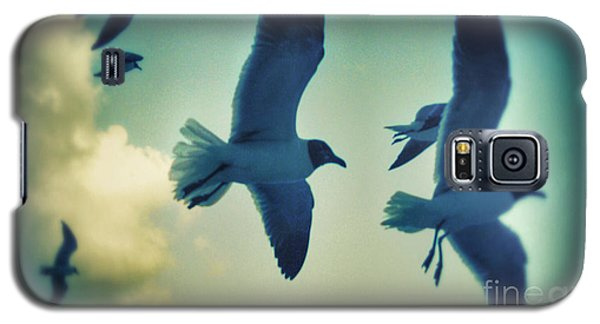 Gulls Galaxy S5 Case