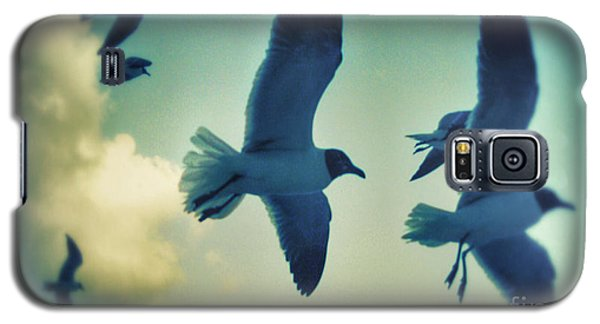 Gulls Galaxy S5 Case