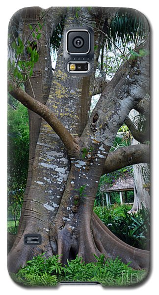Gumby Tree Galaxy S5 Case by Judy Wolinsky