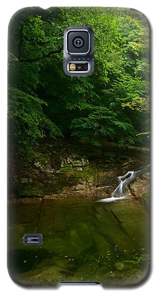 Gyeryongsan Stream And Pool Galaxy S5 Case