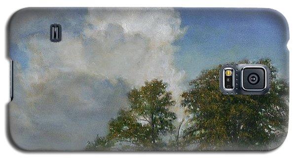 Gypsy Bay Galaxy S5 Case by Wayne Daniels