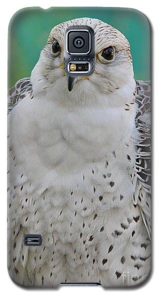 Gyrfalcon Galaxy S5 Case