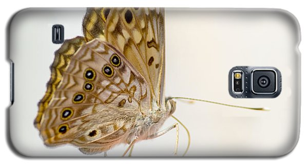 Hackberry Emperor On Finger Galaxy S5 Case