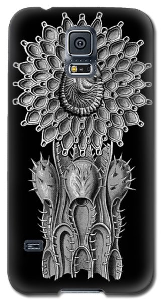 Galaxy S5 Case featuring the digital art Haeckel Collage by Christophe Ennis