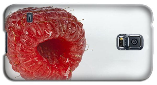 Hairy Raspberry Galaxy S5 Case by John Crothers