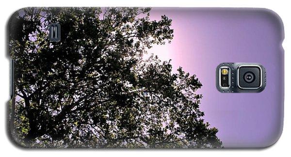Galaxy S5 Case featuring the photograph Half Tree by Matt Harang