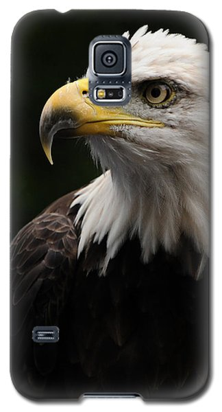Haliaeetus Laucocephalus Galaxy S5 Case by Mike Martin
