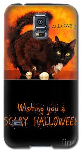 Halloween Cat Galaxy S5 Case