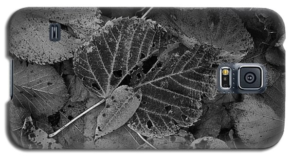 Halloween Leaves Galaxy S5 Case by Tim Good