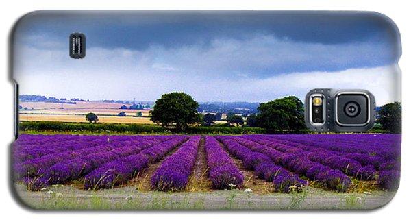 Hampshire Lavender Field Galaxy S5 Case