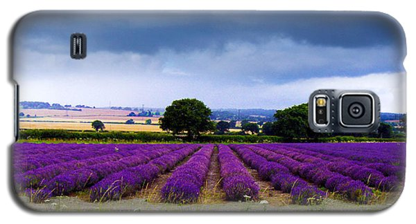 Hampshire Lavender Field Galaxy S5 Case