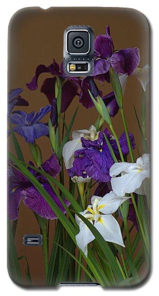 Galaxy S5 Case featuring the photograph Hanashoubu by Rachel Mirror