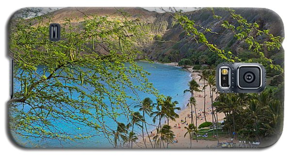 Hanauma Bay Nature Preserve Beach Through Monkeypod Tree Galaxy S5 Case