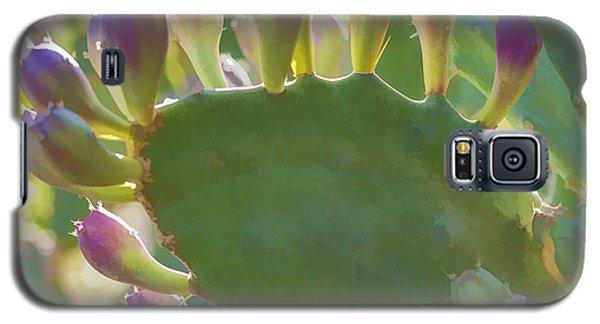 Hand Of God Galaxy S5 Case