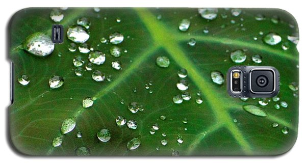 Hanging Droplets Galaxy S5 Case