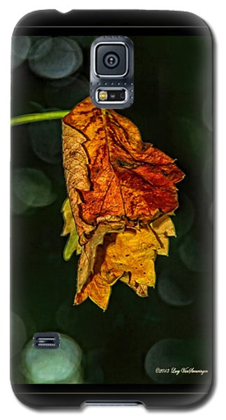 Hanging Gold Framed Galaxy S5 Case