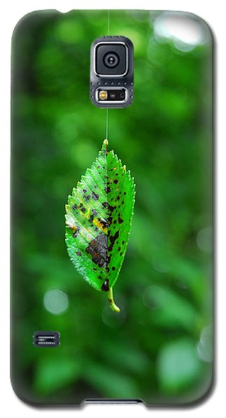 Galaxy S5 Case featuring the photograph Hanging On By A Thread by Lena Wilhite