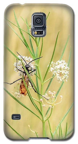 Hanging On Galaxy S5 Case