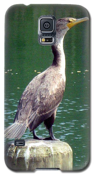 Galaxy S5 Case featuring the photograph Hanging Out Lakeside by Wendy Coulson