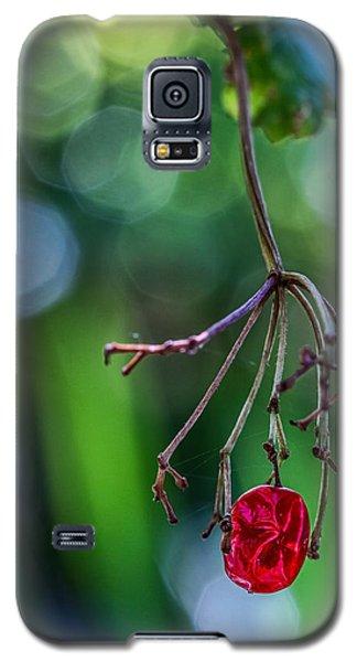 Hanin On In Reno Galaxy S5 Case