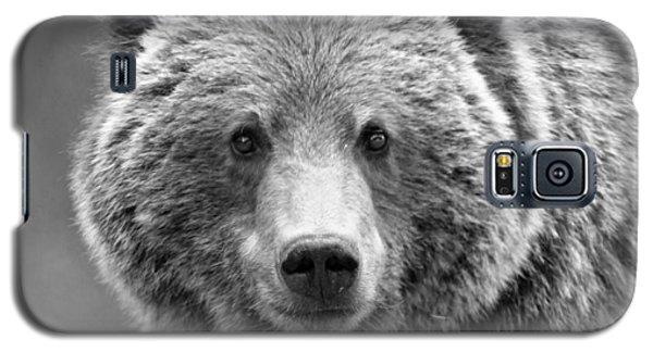 Brown Bear Galaxy S5 Case - Happy Bear by Stephen Stookey