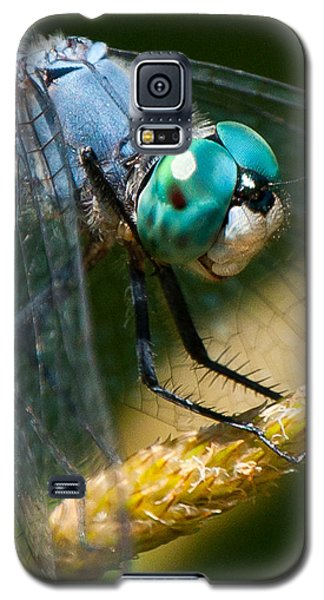 Galaxy S5 Case featuring the photograph Happy Blue Dragonfly by Janis Knight