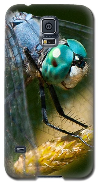 Happy Blue Dragonfly Galaxy S5 Case by Janis Knight
