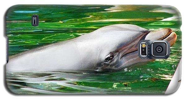 Happy Dolphin Galaxy S5 Case by Kristine Merc