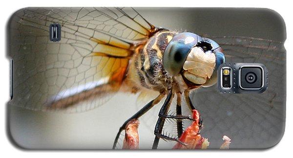 Happy Dragonfly Galaxy S5 Case