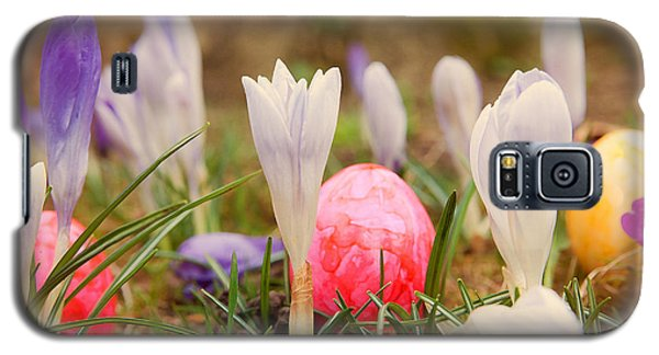 Galaxy S5 Case featuring the photograph Happy Easter 2 by Christine Sponchia