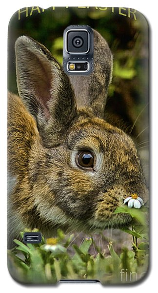 Happy Easter Galaxy S5 Case by Anne Rodkin